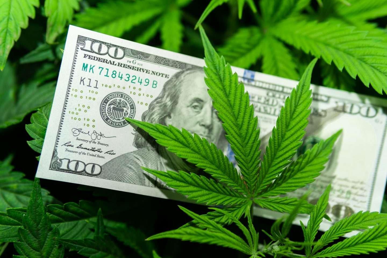 foto de uma planta de cannabis e uma nota de dólar para representar os fundos alternativos cannabis